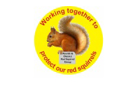 Protect Red Squirrels